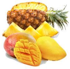 تولید پوره میوه جات