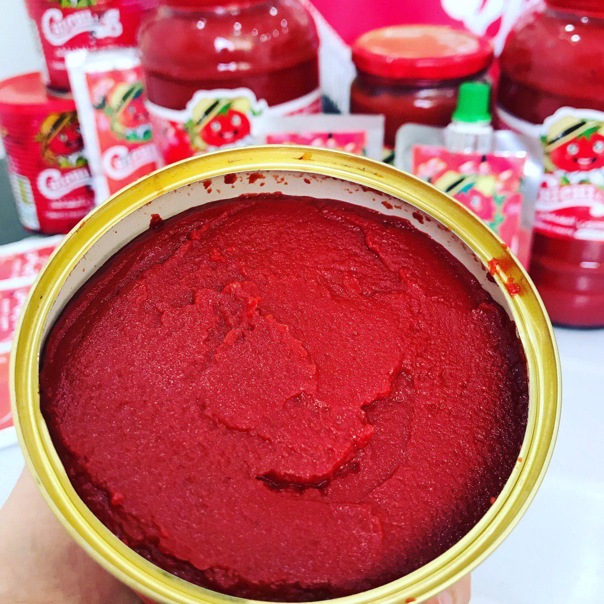 خریدار رب گوجه قوطی 800 گرمی