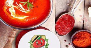 کارخانه تولیدی انواع رب گوجه فرنگی